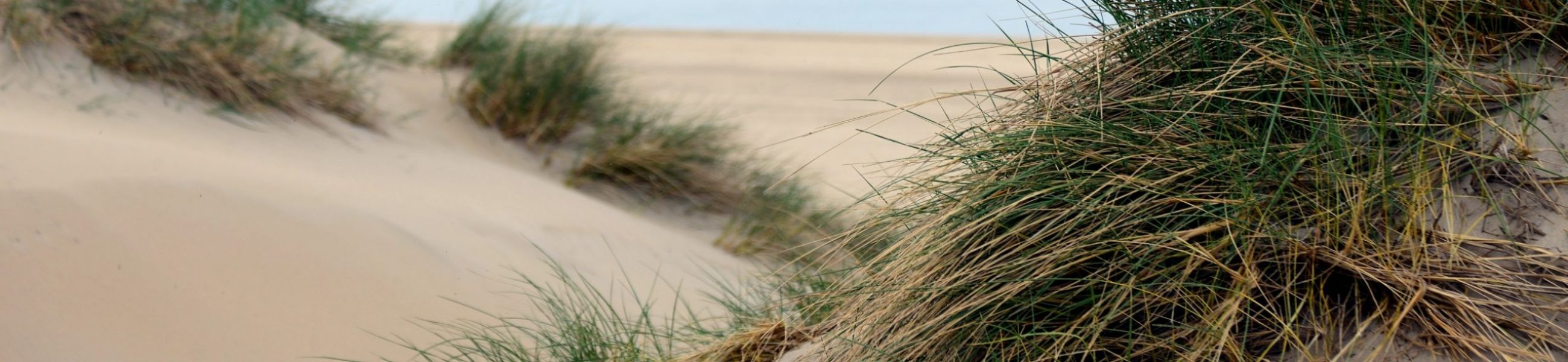 dunes-4752591